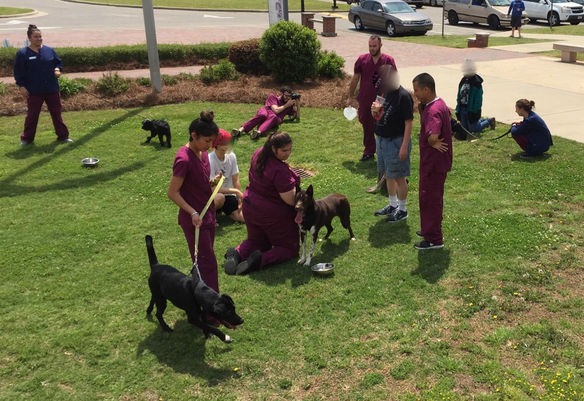 Paws to Read provided play time with Vet Med pups