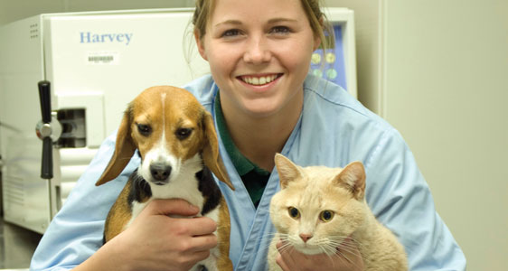 veterinary medical technology, cccc - central carolina community, Human Body