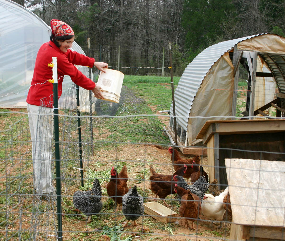 Click to enlarge Central Carolina - Green Central - grows new farmers