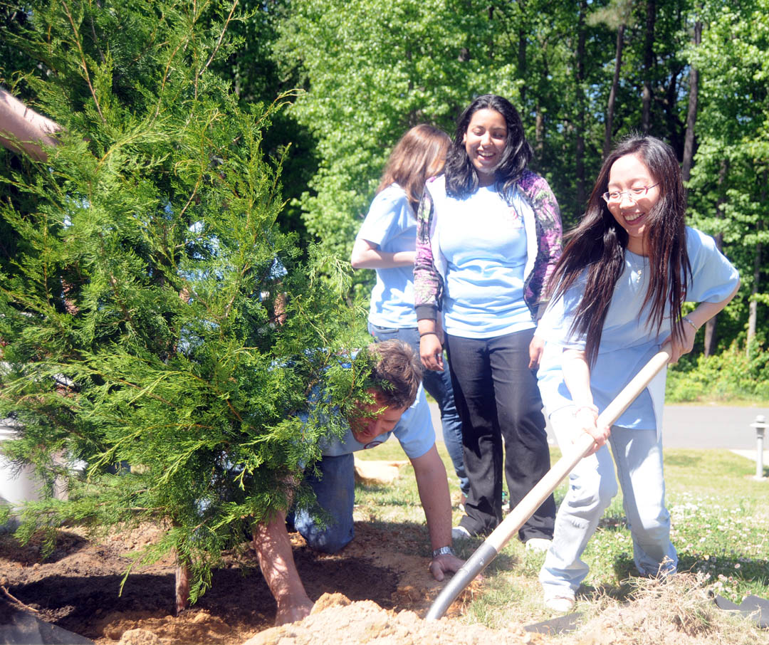 Click to enlarge,     Professor Shuya Che (right), Central Carolina Community College Confucius Classroom instructor, wields a shovel during the April 29 planting of an Eastern Redcedar tree by members of her Elementary Chinese-1 class. The tree planting on the college's Lee County Campus commemorated Chinese Arbor Day-March 12, U.S. National Arbor Day-April 30, and Chinese Labor Day-May 1. Among those taking part were Jon Matthews (kneeling), the college's dean of University Transfer, Health Sciences, and Developmental Studies; and students (back, from left) Roseanna Terry and Aleida Dominguez, both of Lee County. In addition to the tree planting, the class enjoyed listening to Che tell about the origins and meaning of Chinese Arbor Day and celebrating the birthdays of students in the class whose birthdays fall between July and December. Class members also presented Che with a vase of flowers in appreciation for her enthusiasm in teaching. Other Elementary Chinese-1 students taking part were Malcolm Murchison, Jemima Boncales, Aleida Domingoes, Denise Garcia, Paola Fernandez, David Gietzen, Roseanna Terry, Michelle Womble, Nicholas Kehagias, Daniel Buchanan, Rebecca Francis, Juanita Smith, and Tony Diaz. For more information on Central Carolina Community College's Confucius Classroom, go online to  www.cccc.edu/confucius .