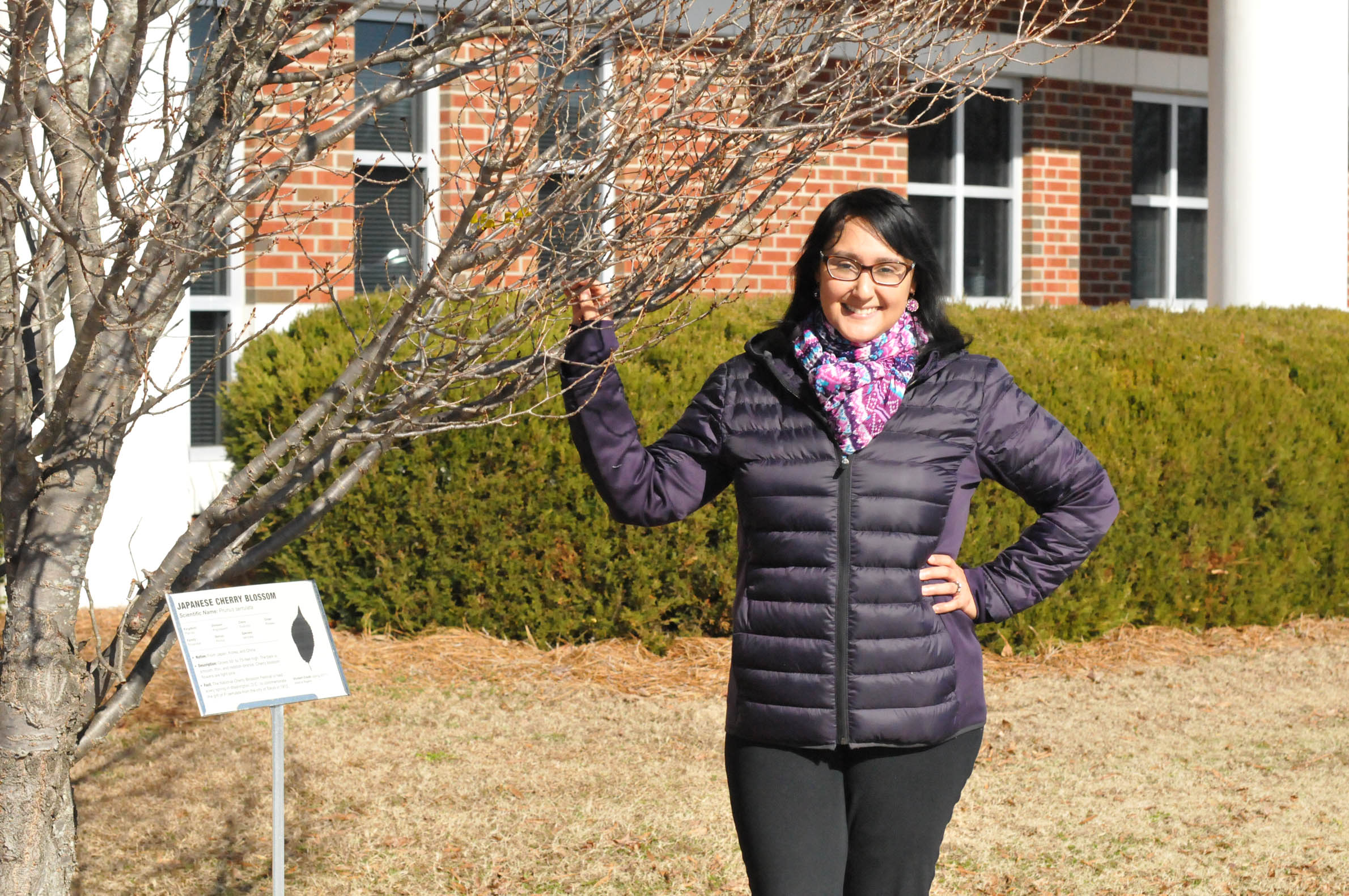 "Click to enlarge,  Central Carolina Community College Biology Instructor Anthea Saez stands beside one of the trees selected for the ""Tree Identification Project"" on the CCCC Lee Main Campus in Sanford."