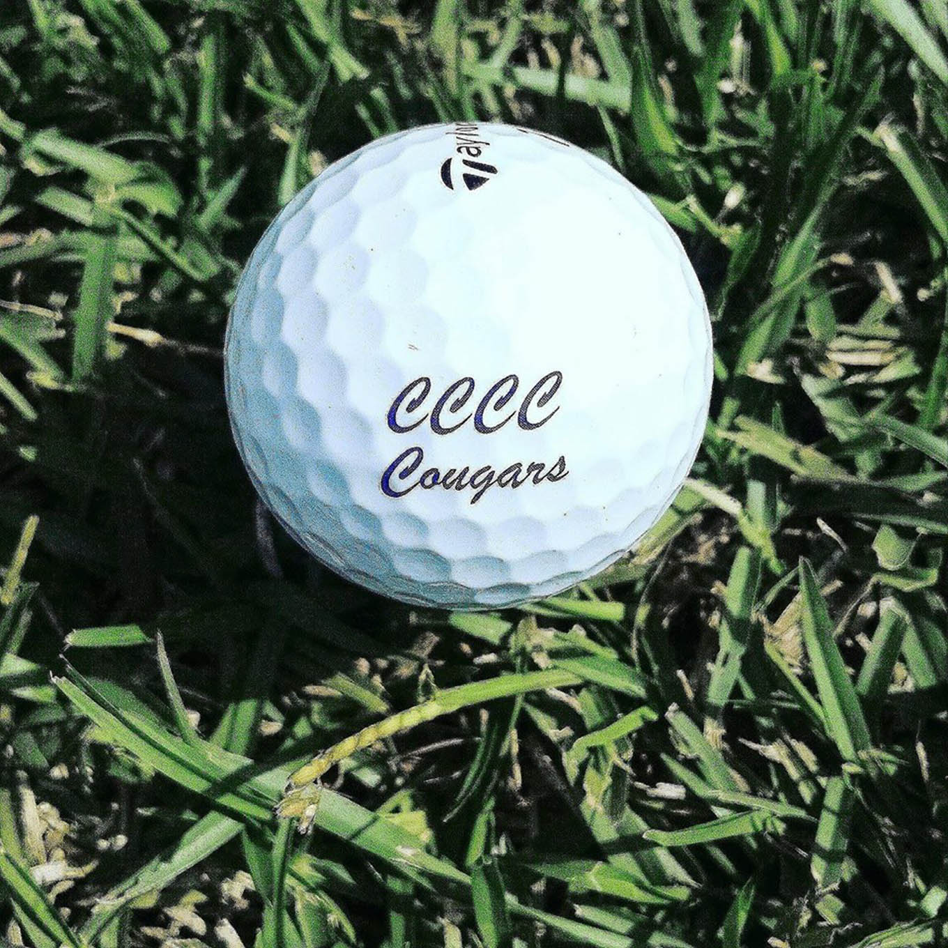 CCCC Foundation Golf Classic coming to Harnett